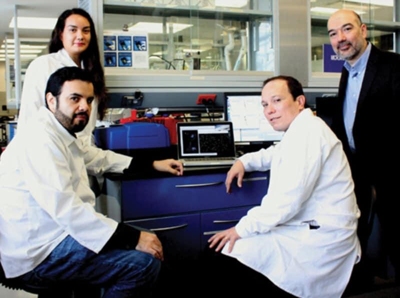 Ampli  an investigadores del tec de monterrey posibilidades para detectar el ca  ncer de mama