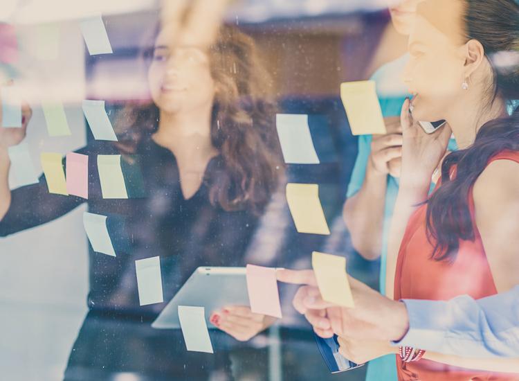 Foto principal sitio creatividad nov